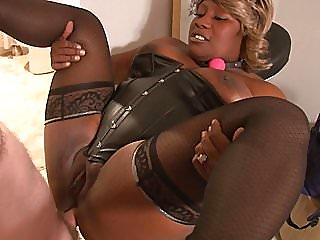 anal,black and ebony,bbw