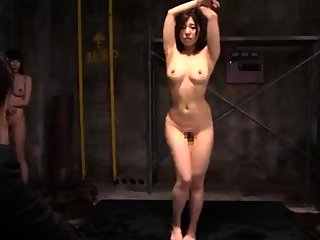 asian,bdsm,group sex