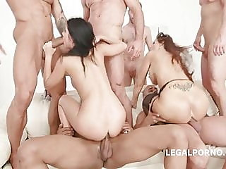 anal,hardcore,group sex