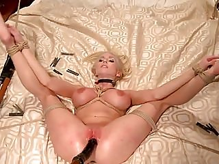 bdsm,top rated,hd videos